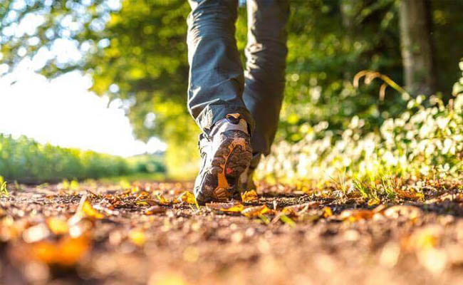 gå tur